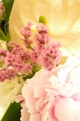 咲き枯れる花の美しさ