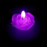 Rose_candlec_300